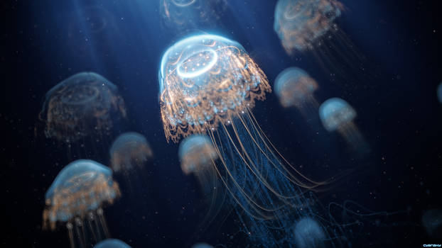 [Fractal] Jellyfish