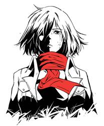 Mikasa by nadras