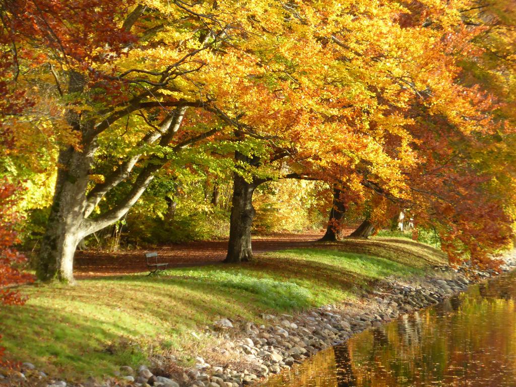 Autumn in Horten by Lingha