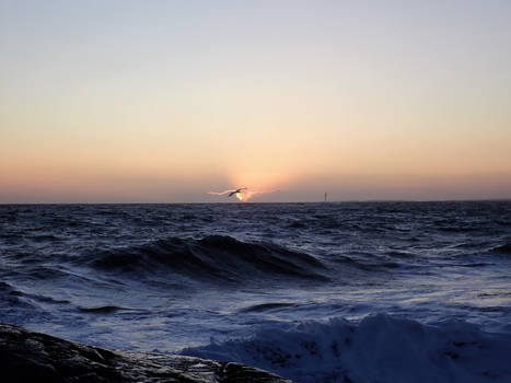The Sea of January
