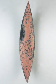 fish-ish form 4
