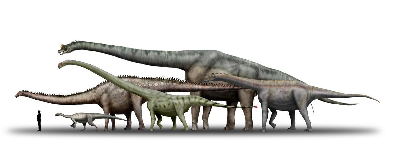 Sauropods_by_unlobogris.jpg