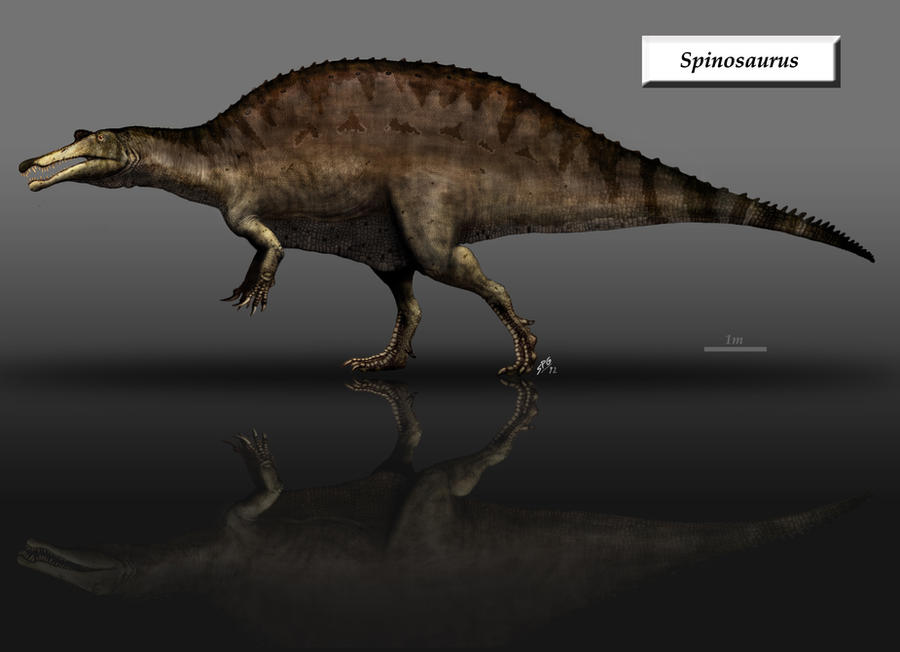 Spinosaurus by unlobogris