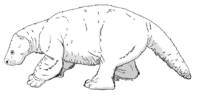 Glossotherium