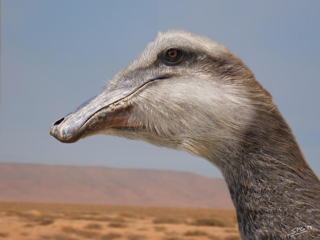 Deinocheirus by unlobogris
