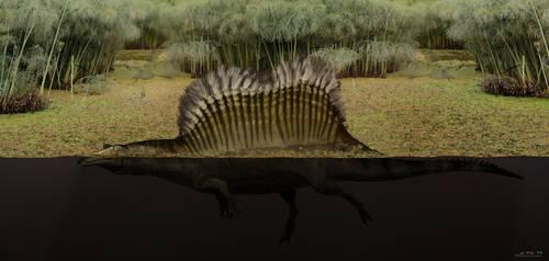 Yet another Spinosaurus...