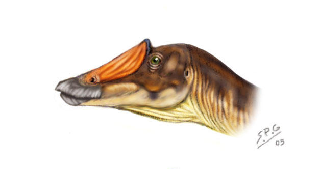 Prosaurolophus maximus by unlobogris