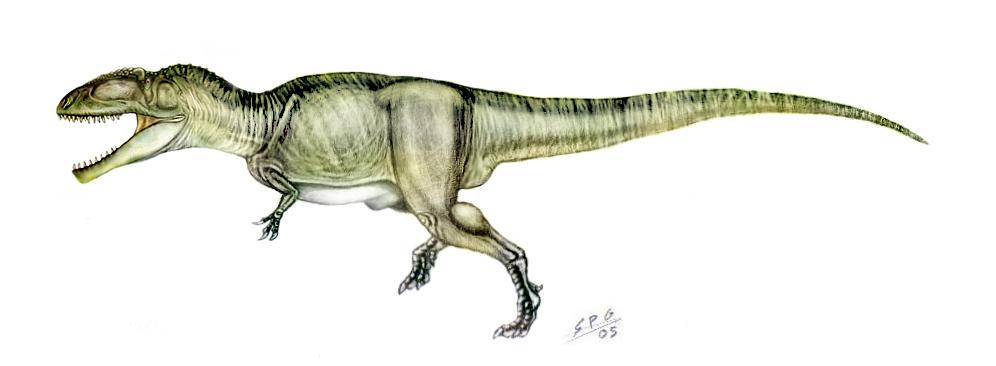 Giganotosaurus Carolini By Unlobogris On DeviantArt
