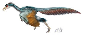 Archaeopteryx by unlobogris
