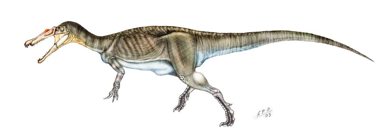 Baryonyx walkeri by unlobogris