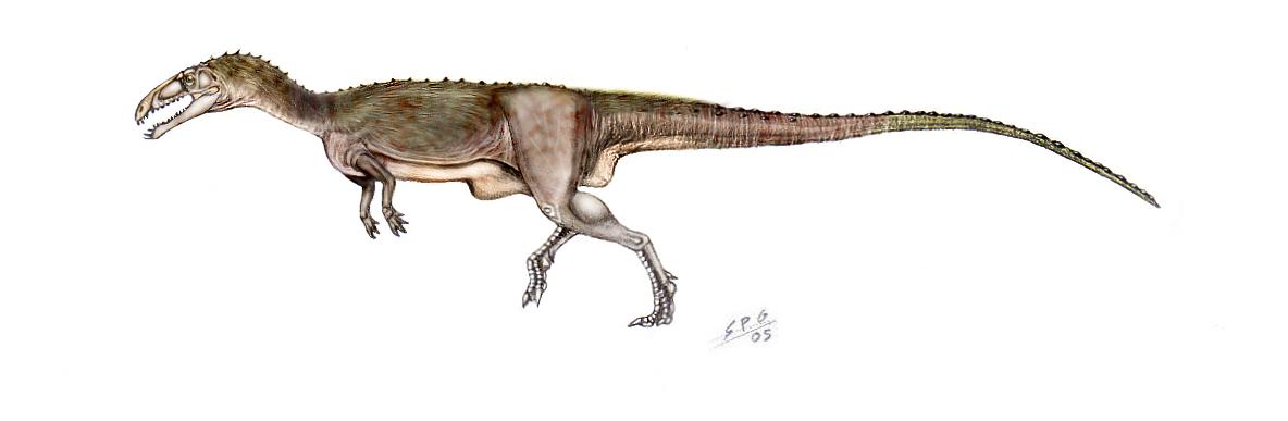 Masiakasaurus knopfleri