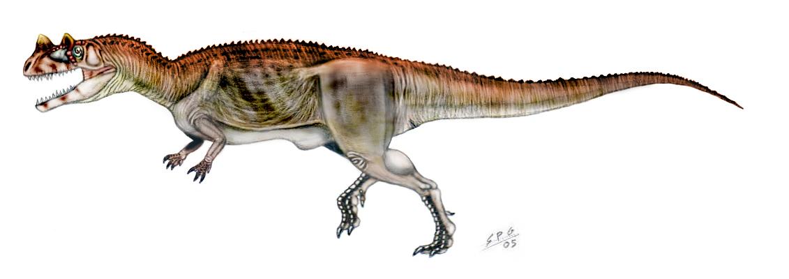 Ceratosaurus nasicornis by unlobogris