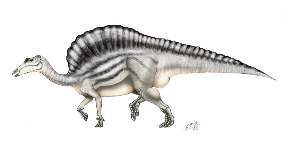 Ouranosaurus nigeriensis by unlobogris on DeviantArt