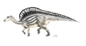 Ouranosaurus nigeriensis by unlobogris