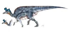 Lambeosaurus lambei by unlobogris