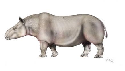 Water rhino by unlobogris