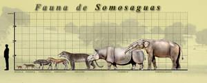 Somosaguas Fauna poster