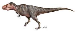 Tyrannosaurus revised by unlobogris