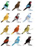 12 little birds