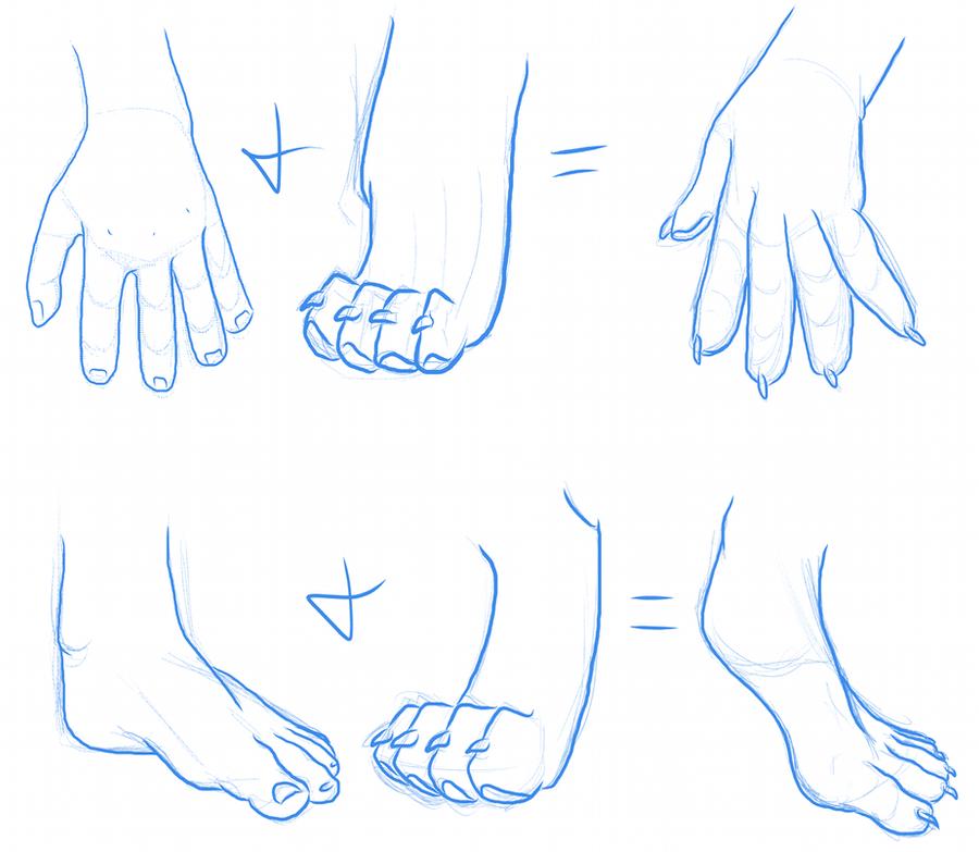 Furry Hands and Feet by lionsilverwolf on DeviantArt