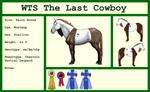 WTS The Last Cowboy by lionsilverwolf