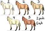 CLOSED 2 Point Horse Adopts