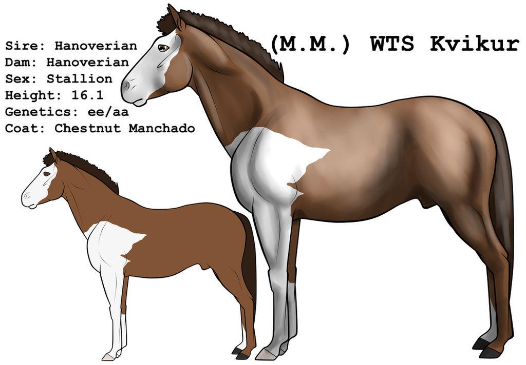 (M.M.) WTS Kvikur by lionsilverwolf