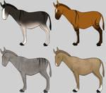 CLOSED Zorse Mule Adopts