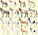 OPEN Free Horse Adopts