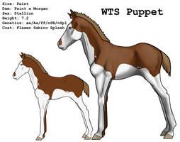 WTS Puppet by lionsilverwolf