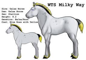 WTS Milky Way by lionsilverwolf