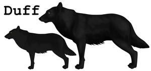 Duff by lionsilverwolf
