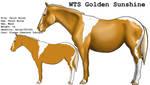 WTS Golden Sunshine by lionsilverwolf