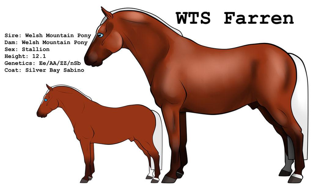 WTS Farren by lionsilverwolf