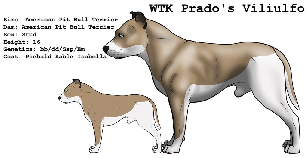WTK Prado's Viliulfo by lionsilverwolf
