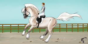 Advanced Dressage Kaaring YNH - Collected Canter