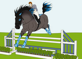 CLOSED Your Horse Here - Showjumping