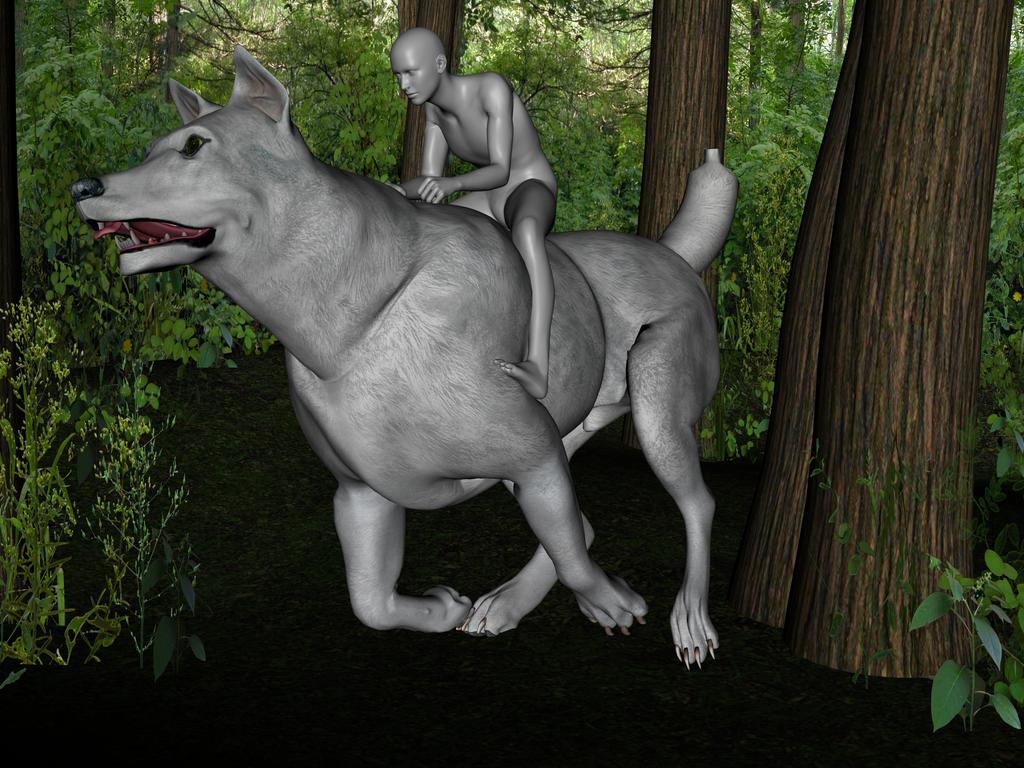 Yth Exploring by lionsilverwolf