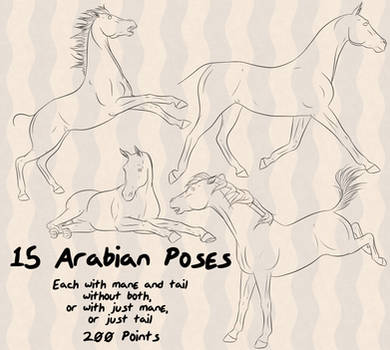 Arabian Horse 15 Poses by lionsilverwolf
