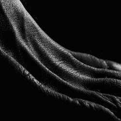 Chiaroscuro VII by Panorama152