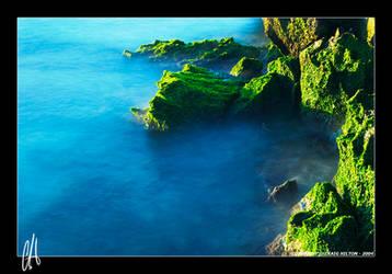 Ocean Moss II by purplepawn