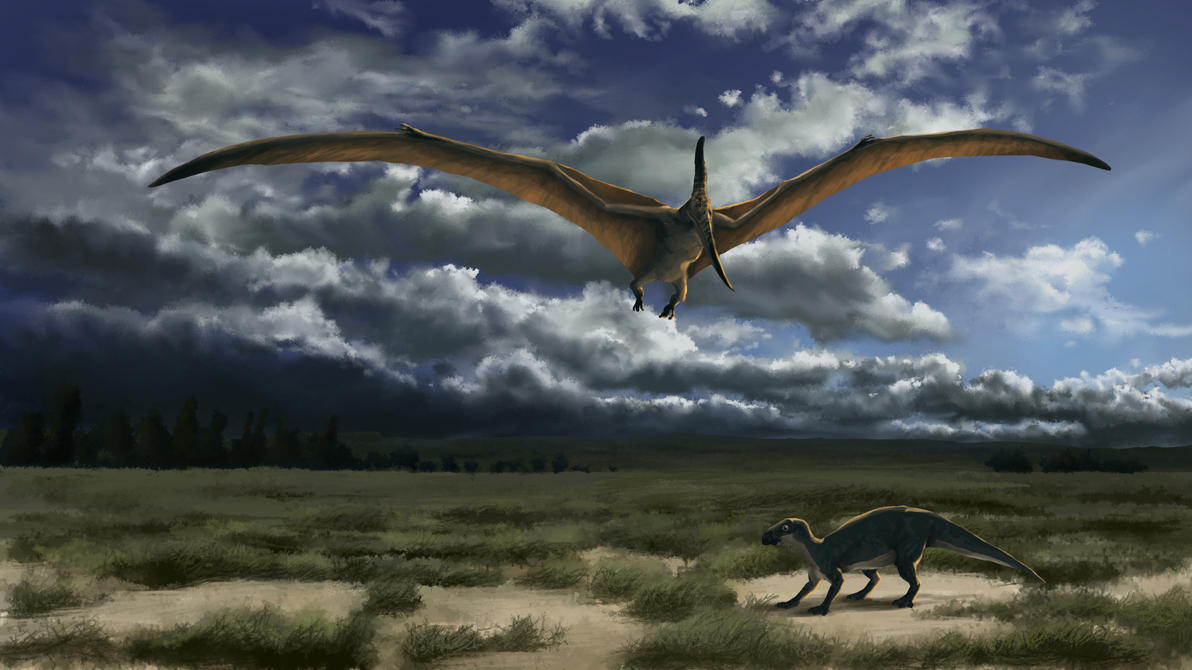 Pteranodon by Wanderer768