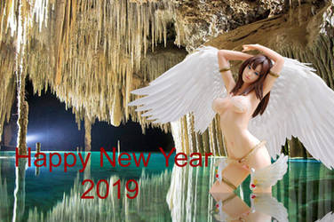 2019 New Year Copy by kongvmax