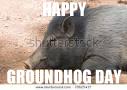 Ground Hog Meme by suzukeii