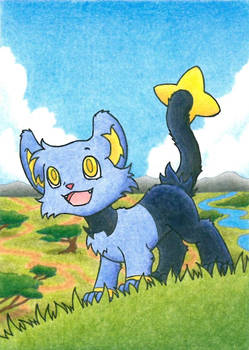 Shinx can't wait to be king