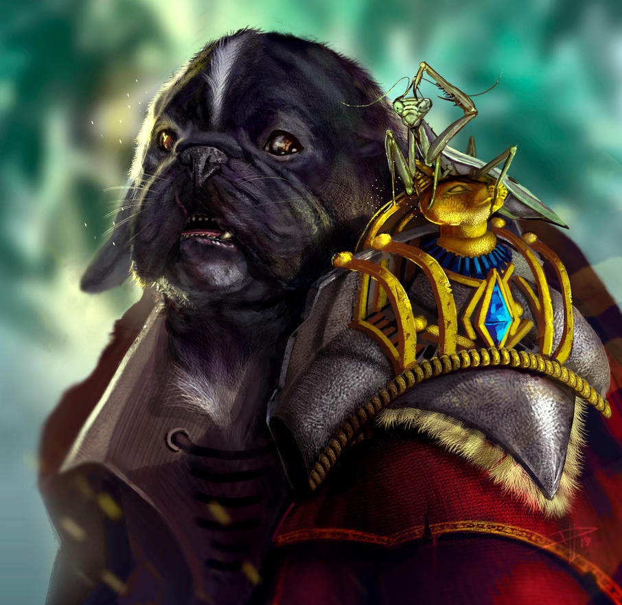 Wizard dog / David De Leon Luis by Daviddleonluis