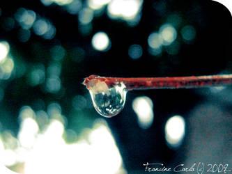 Drop. by pin-ki