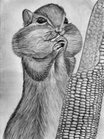 Animal by chamathe