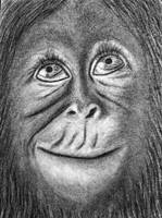 Little Monkey by chamathe