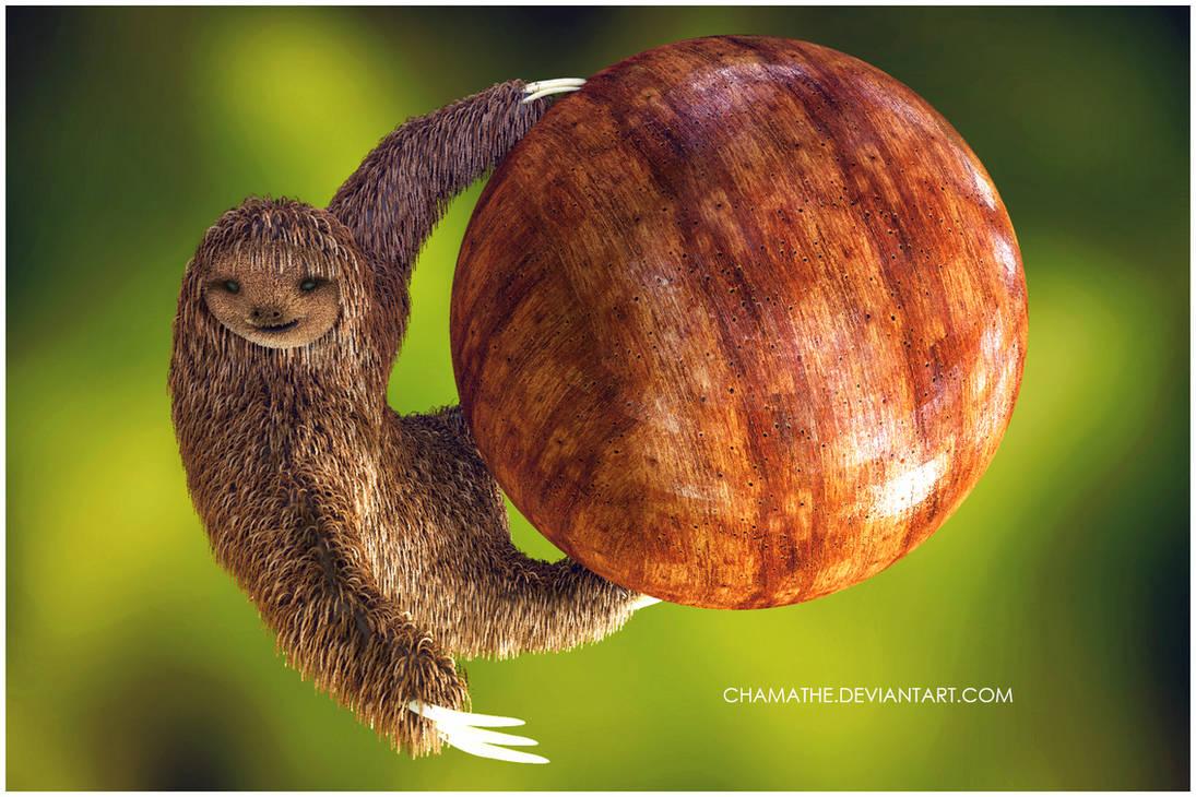 Sloth - Zbrush Practise Fibermesh by chamathe